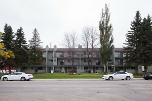 Ground-Floor 2bd w/ Patio and Ensuite Laundry, Great location!