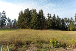 Large Building Lot 1811 -22 St NE Salmon Arm