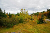 Fully service land lot in Nicky's nose Cove Green Bay NL