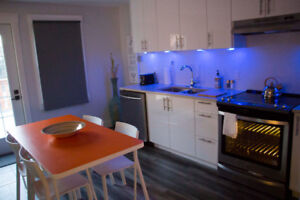 UNIVERSITY Luxury APT - (NOV or Dec 1)