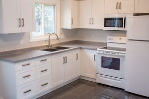 Gorgeous Home for 1st time buyers or investors Kitchener / Waterloo Kitchener Area image 4