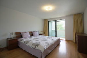 Cozy Room, Convenient Location, Safe Neighborhood 宽敞房间,方便位置,安全社区