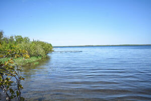 Bulding Lot For Sale - Georgian Bay Waterfront 0.5 Acres L12