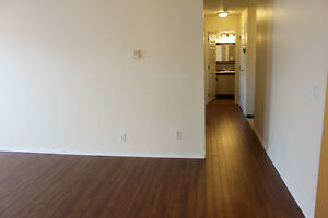1 Cat OK. 2 Bedroom. North Shore. Available anytime before June1