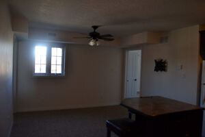 Beautiful one bedroom apartment for rent in Elmira Kitchener / Waterloo Kitchener Area image 5