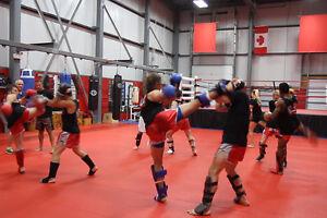 ** Free Kickboxing or Kung Fu Class ** Kitchener / Waterloo Kitchener Area image 4