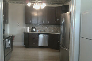 Great Student Rooms (Downtown Cambridge / Galt) Cambridge Kitchener Area image 8