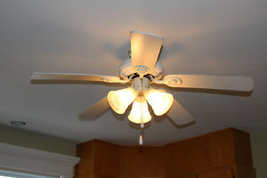 Ceilling Fan with Light