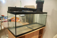75 Gallon Fish Tank*** Lights included