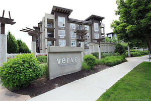 The Verve Large one bedroom and den! Kelowna Showing  tomorrow!