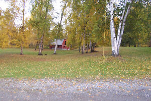 Large home on 7 acres of land, 2 titles, zoning for farm animals Prince George British Columbia image 5