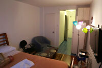 Furnished Apartment In Downtown for Daily,Weekly, Monthly Rental