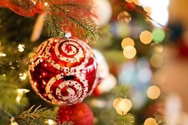 Christmas photography package