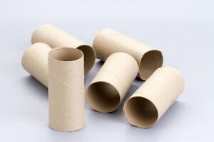 30 TOILET PAPER ROLLS (ARTS & CRAFTS)