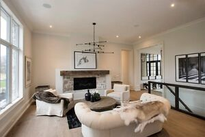 Fireplaces installed starting at $2499.00 Cambridge Kitchener Area image 8