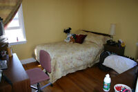 Roommate wanted! Attn: Queens U & St. Lawrence College students