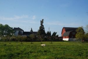 CENTURY FARMHOUSE WITH ACREAGE FOR SALE BY OWNER