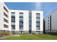 2 bedroom flat in Arneil Drive, Edinburgh, EH5 (2 bed)