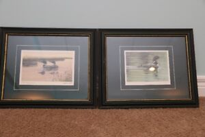 "Framed Pictures - 16""x14"""