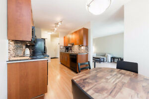 Newly Renovated 2 Bedroom Downtown Condo - JUST REDUCED RENT
