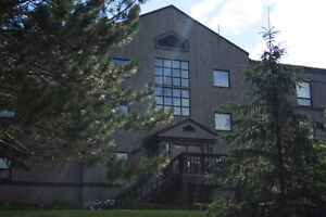 Furnished All-Inclusive Condo Suites (Deerhurst)