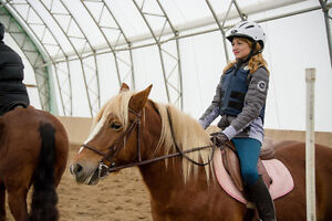 Package of 4 private lessons/month on a trained pony, certified