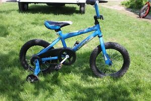 HUFFY 14 INCH BIKE/ TRAINIG WHEELS Kawartha Lakes Peterborough Area image 3
