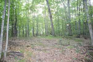 Private 14 Acre Lot