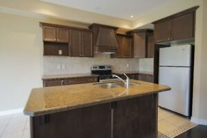A MUST SEE! Stunning 3 bedroom, 3 bathroom home in Dundas!