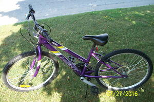 Lots of Various Bicycles For Sale (good shape) Sarnia Sarnia Area image 5