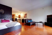 Contemporary Loft, furnished & equip., all incl., Downtown
