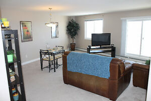Furnished 1 bedroom condo in Morinville