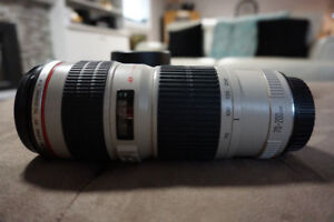 Canon Telescopic Lens EF 70-200mm F/4L USM- Ultrasonic with hood