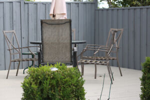 Deck Fence Pergola Staining  Sprayed  1 Day From $250 + Stain