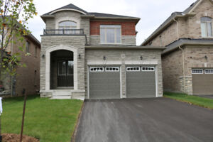 Executive Rental in North Whitby Available October 1, 2018