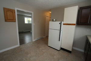 1 Bedroom Ground Level Apt 3 Webb Place Powers Pd Mt. Pearl