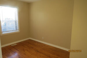 House for Rent Immediately - Excellent location for Students Kingston Kingston Area image 5