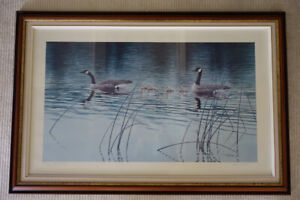 CANADA GEESE LIMITED EDITION PRINT