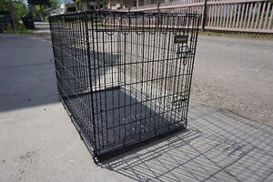 Petmate wire dog crate, Large