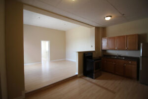 Avail May 1st - 1 Bedroom Apt in Renovated Downtown Building