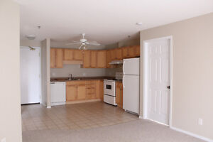 2 Bed + 2 Bath in Great Location for Students + Professionals