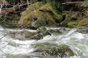 Placer claim for sale  Leach Rv.