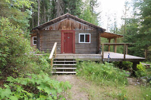 6.77 acres + A Cabin in the Woods.