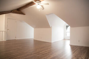 Fully Renovated Large One Bedroom Loft In Durand Neighbourhood!