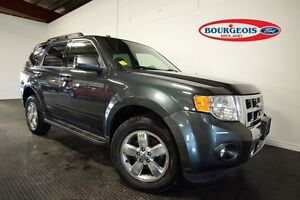 2009 Ford Escape LIMITED 3.0L V6