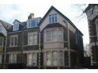 Newly refurbished large 2 double bed flat with parking