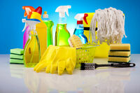 We do House cleans, Move in & move outs, Construction etc.