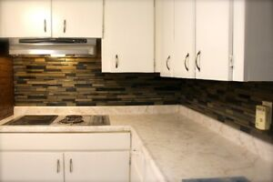 newly renovated apt in allliston