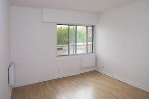 CLEAN BRIGHT STUDIO IN HEART OF MCGILL GHETTO - TWO MONTHS FREE!