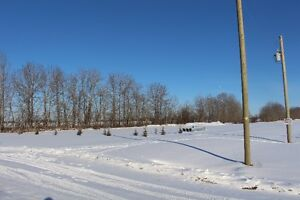 ACREAGE LOT WITH SERVICES - Rural Westlock County